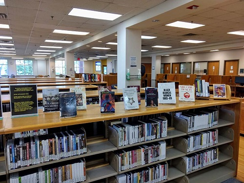 Library BLM Book Display